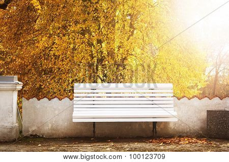 Bench in autumn with lots of sunshine