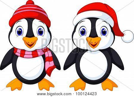 Cute penguins cartoon
