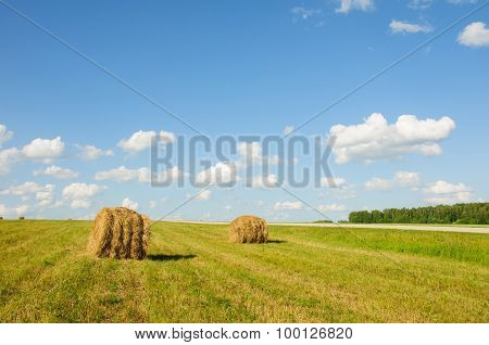 A Stack Of Hay In The Field