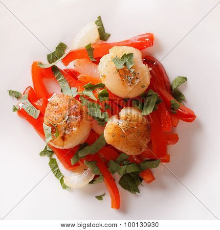 Scallops Grilled With Peppers On A Plate Close-up. Horizontal Top View