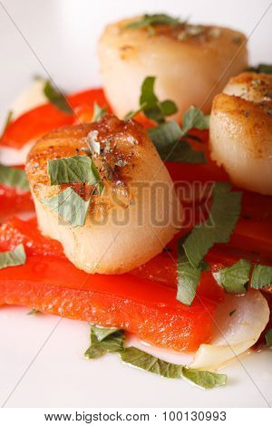 Fried Scallops With Red Pepper Macro On A Plate. Vertical