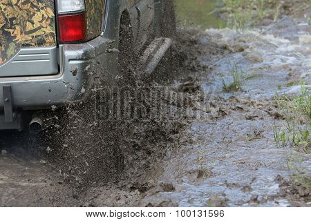 Splashes Of Mud