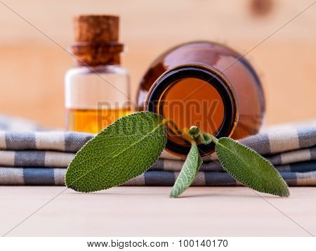 Natural Spa Ingredients Sage Essential Oil For Aromatherapy With Sage Leaf On Wooden Background.