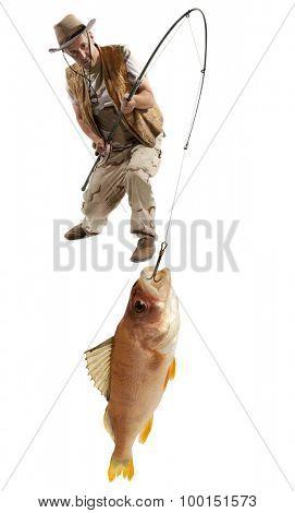 Fisherman with big fish - perch (Perca fluviatilis) isolated on white