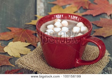 Hot Chocolate And Marshmallows With Rustic Autumn Background