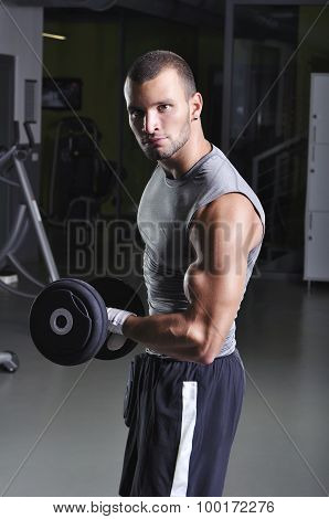 Handsome Muscular Male Model Doing Biceps Exercise With Dumbbells