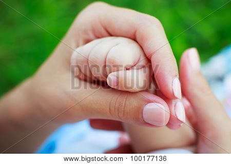 Mother's Hand Holding Baby's Hand
