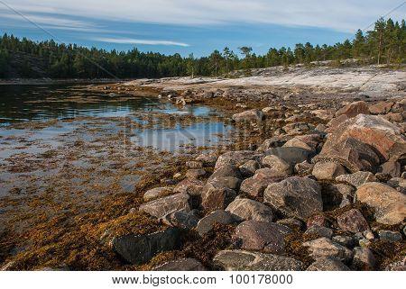 Rocky Shore Of The White Sea