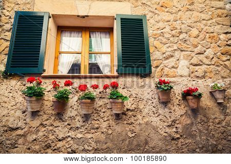 Window With Shutters And Flower Pots