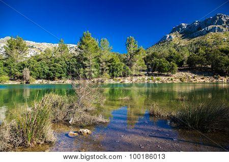 Panta De Gorg Blau, Mallorca
