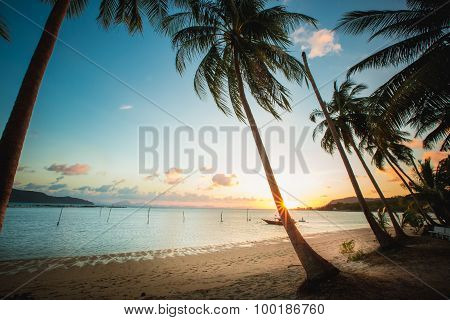 Sunset over the tropical beach.