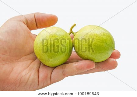 close up of fresh limes on hand