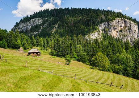 Single wooden house on slope meadow in mountains
