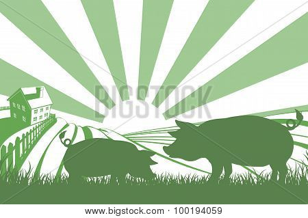 Silhouette Pigs On Farm