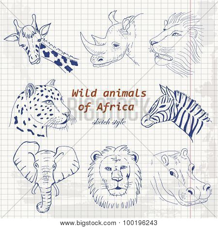 Set of wild animals of Africa in sketch style on a paper