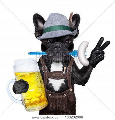 Bavarian Beer Celebration Dog