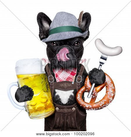 Bavarian Beer Celebration Dog