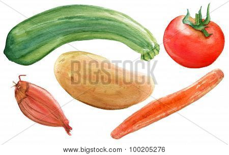 A set of rustic watercolor vegetable drawings