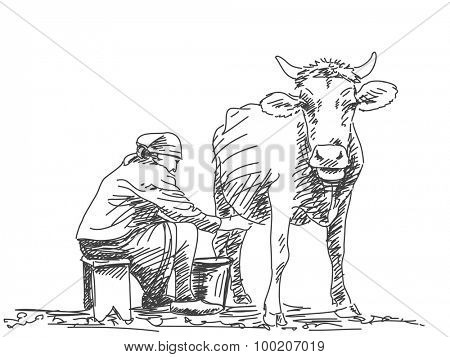 Sketch of woman milk a cow by hand Hand drawn vector illustration