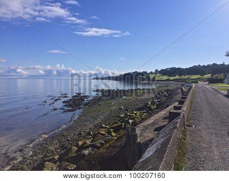 A walk along the Cultra shore on a summer morning