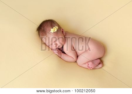 Newborn Baby Girl Sleeping On A Yellow Blanket