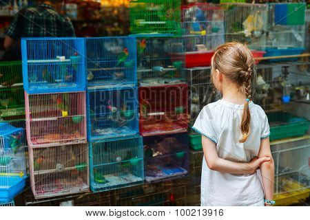 Little girl looking at birds in cages for sale at Birds market, Kowloon Hong Kong, popular tourist destination.