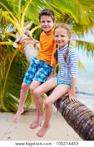 Brother and sister enjoying time at tropical beach sitting on hanging palm