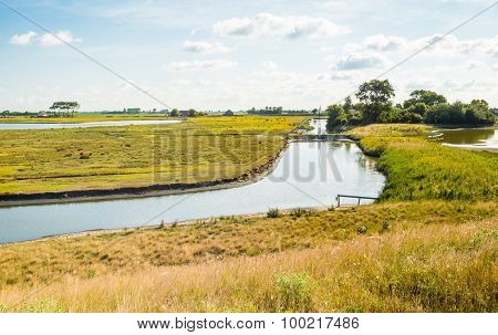 Typical Dutch Polder Landscape In The Summer Season