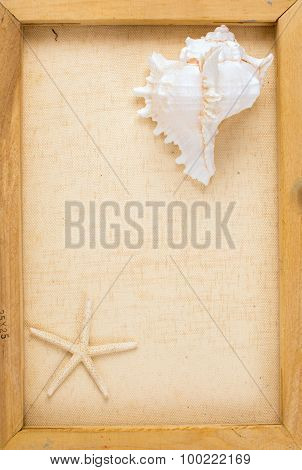 Vintage Image Of Conch Shell And Starfish On The Canvas Frame