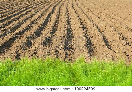 Closeup Of Plowed Land Edge