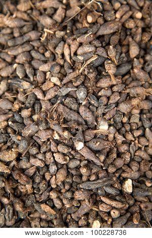 Herbs At Market In Agadir, Morocco