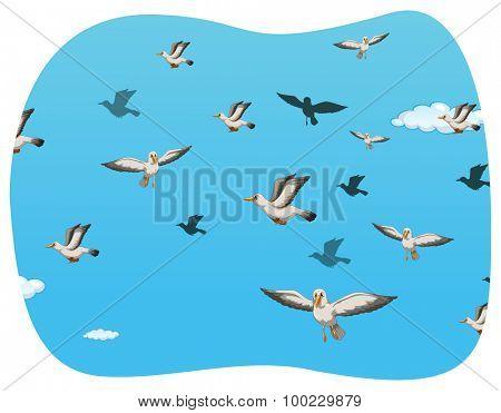 Group of seagull flying illustration