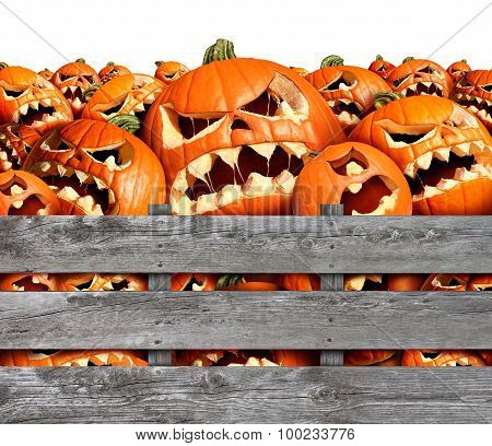 Halloween Pumpkin Harvest