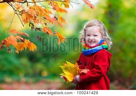Little Girl With Yellow Autumn Leaf