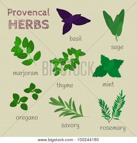 Provencal Herbs Set.