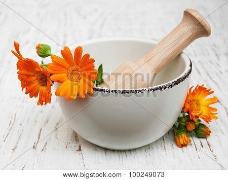 Flower Of Calendula Officinalis In Mortar