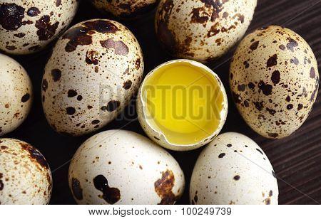 The Quails Eggs