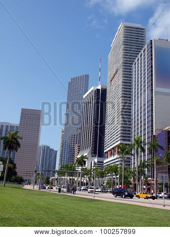 Miami Downtown Day Scene