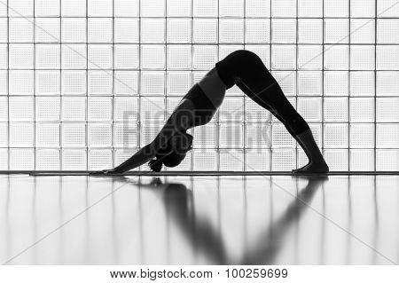 Young woman practicing in a yoga studio. Downward facing dog is the basic yoga pose.