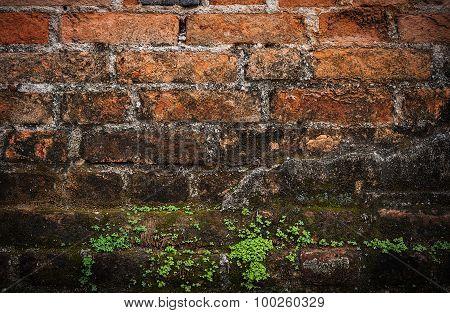 Old Grunge Brick Wall Dark Border