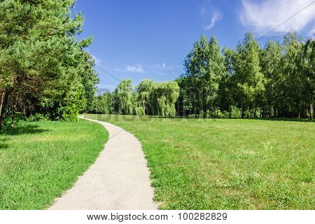 Walkway In The Park Next To The Forest And Meadow