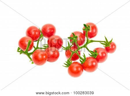 Two Branches Of Cherry Tomato On A Light Background