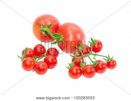 Two Branches Of Cherry Tomato And Two Conventional Tomatoes