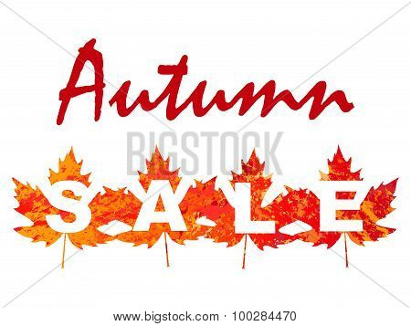 vector illustration of autumn sale with maple leaves In grunge style