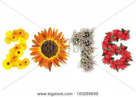 2016 New Year date formed from marigold flowers, sunflower, heather and poinsettia representing four season of the year