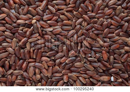 Red Rice, A Variety Called Camargue Rice, From France