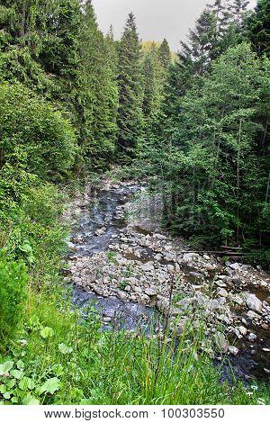 rapid mountain stream