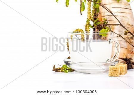Isolated transparent cup of birch sap on the background of birch twig