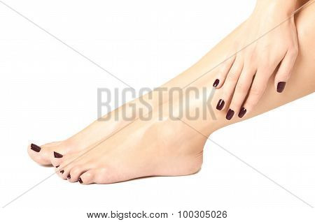 Beautiful female feet and hands with brown manicure