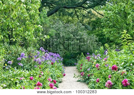 Stone garden path in the middle of summer